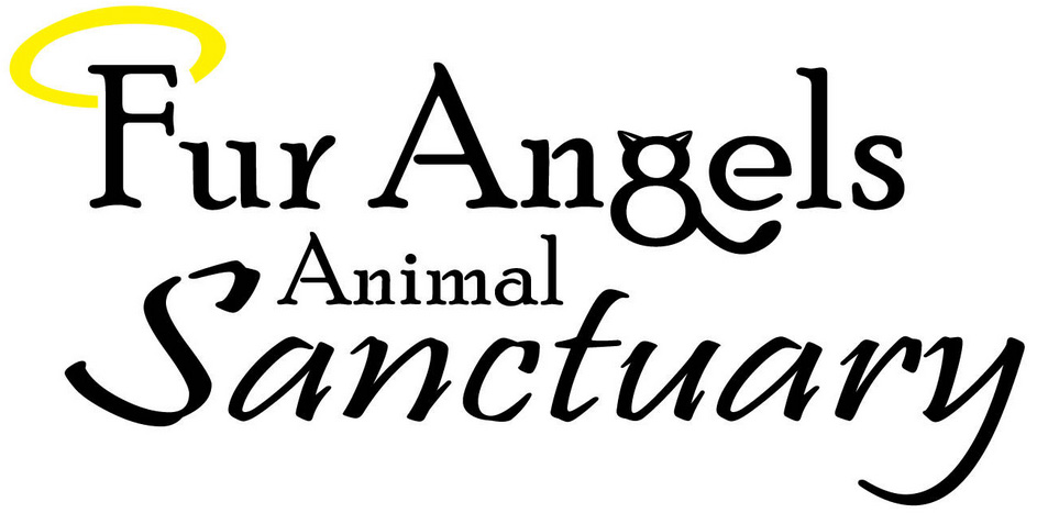 Fur Angels Animal Sanctuary